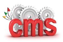 cms-hosting